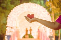 Female hand with a little red heart shape pillow on decorate colorful light bulbs. In garden stock photos