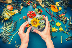 Female hand making autumn flowers  arrangements at blue florist workspace background Royalty Free Stock Images