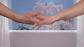 Female hand in male hand on background window with view on blossoming sakura tree. Close up man hand holding female hand on window background stock video footage