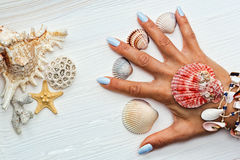 Female hand with manicure and sea shells between fingers royalty free stock photography