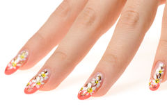 Female hand with nail art - figure a camomile Royalty Free Stock Photography