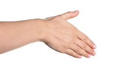 Female hand outstretched for a handshake. Isolated on white Stock Image