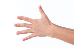 Female hand outstretched to the side and showing the five fingers is isolated on a white background Stock Photo