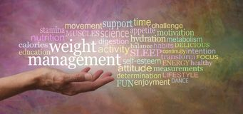 Words associated with Weight Management Tag Cloud royalty free stock images