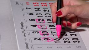 Female hand planning working days with pink marker on calendar. Woman cross through days and circle other. 4K stock video