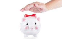Female hand preserves a pig-coin box Stock Photo