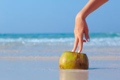 Female hand propped on coconut on sea background. Female hand propped on coconut on blue sea background Stock Image