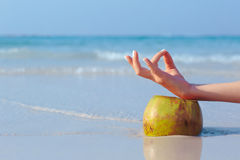 Female hand propped on coconut on sea background. Female hand in yoga pose propped on coconut on blue sea background royalty free stock photo