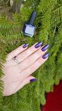 Female hand with purple long nails and nail polish bottle. Female hand with purple long nails manicure and nail polish bottle royalty free stock images
