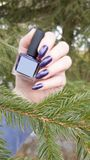 Female hand with purple long nails and nail polish bottle. Female hand with purple long nails manicure and nail polish bottle royalty free stock photo