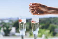 Female hand puts ice into a glasses champagne with strawberry inside on sunny terrace overlooking beautiful view at royalty free stock photo