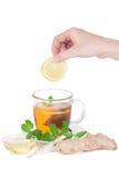 Female hand puts a piece of lemon Stock Photos