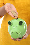 Female hand putting coins into piggy bank Royalty Free Stock Images