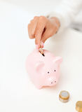 Female hand putting euro coins into piggy bank Stock Images