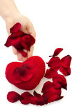 Female hand putting rose petals over heart Royalty Free Stock Photos