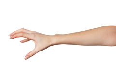 Female hand reaching for something on white Stock Photography