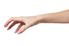 Female hand reaching for something on white Stock Photo