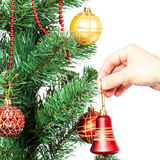 Female hand with red bell and Christmas tree. Royalty Free Stock Image
