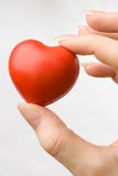 Female hand with red heart. Isolated on grey royalty free stock photography