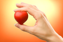 Female hand with red heart. Carefully holding royalty free stock photos