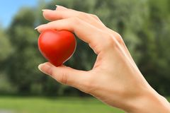 Female hand with red heart. Carefully holding royalty free stock photography