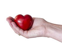 Female hand with red heart. Female with heart of stone stock photography