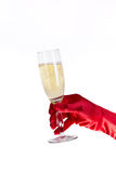 Female hand in red opera glove holding champagne g Royalty Free Stock Image