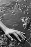 Female hand on rock. Royalty Free Stock Images