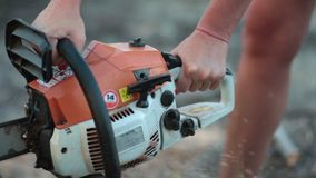 Female hand sawing trunk of dry wood with chainsaw Royalty Free Stock Photos