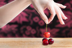 Female hand selecting a cherry. A female hand is selecting a cherry from a wooden table Royalty Free Stock Images