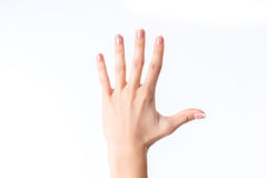 Female hand showing the gesture with five fingers is isolated on a white background Stock Image