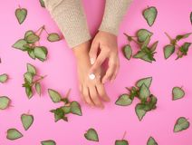 Female hand smears white cream on the other hand and green fresh leaves of the plant. On a pink background, top view. Concept of natural care cosmetics for skin royalty free stock photo