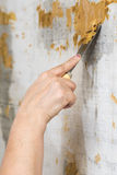 Female hand with a spatula protects the wall Royalty Free Stock Images