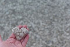 Female hand with a stone in the form of a heart. Against a background of pebbles on the beach. An amazing masterpiece of nature - the stone is like a heart stock photos