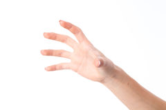 Female hand stretched up and showing the gesture with the fingers is isolated on a white background Royalty Free Stock Image