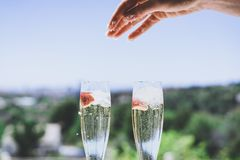 Female hand throwing ice into a glasses champagne with strawberry inside on sunny terrace overlooking swimming pool at royalty free stock photo