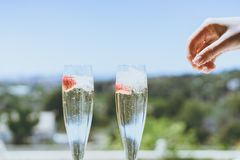 Female hand throws ice into a glasses champagne with strawberry inside on sunny terrace. stock images