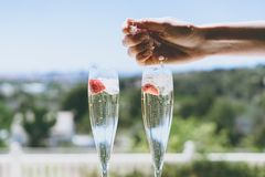 Female hand throws ice into a glasses champagne with strawberry inside on sunny terrace overlooking beautiful view at stock image