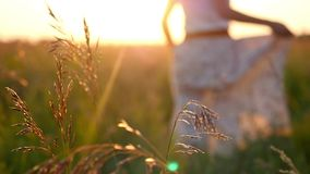 Female hand touching grass and young woman stock video footage