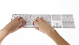 Female hand typing Stock Images