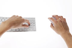 Female hand typing Stock Image