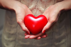 Female hand valentine heart. Object red heart-shaped hands holding a young person stock photos