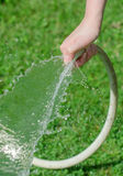 Female hand watering plants Royalty Free Stock Photos