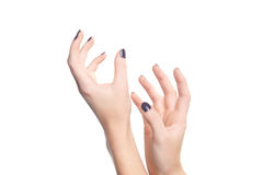 Female hand. On a white background Stock Photos