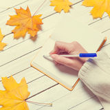 Female hand writing something in to notebook Stock Photos