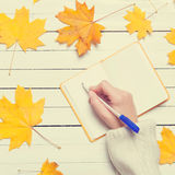 Female hand writing something in to notebook Royalty Free Stock Photo