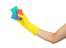 Female hand in yellow glove holding with colorful sponges Stock Photo