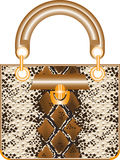 Female handbag Stock Image