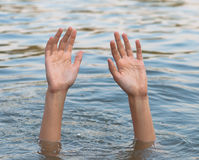 Female hands and arms protruding from the water Stock Images