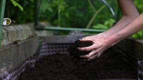 Female hands arranging and working with fertile soil. In a raised garden bed stock video footage